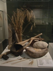 tools of neolithic agriculture by Notafly